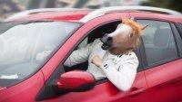 Самоделните маски забранени за германските шофьори