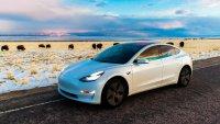 Собственици и фенове на Tesla настояват за по-високо качество